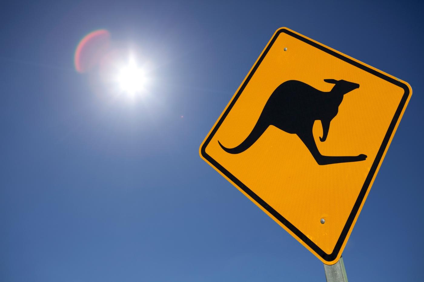 Kangaroo sign in the heat